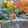 DSC_5595 Central Park , The Pond in the fall
