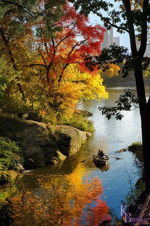 """I carry a small laminated folding map of Central Park with me when I know I'm going to take pictures there. On the map the sections of twisting roads running in and around the little lake in a location known as """"The Ramble"""", looked like a great place to go to get some nice fall shots. It did not disappoint."""