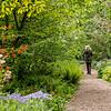 DSC_5407 Wave Hill gardens