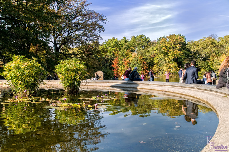 DSC_7526 fall time at Bethesda fountain