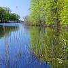 DSC_3221 Wolfe's pond_DxO