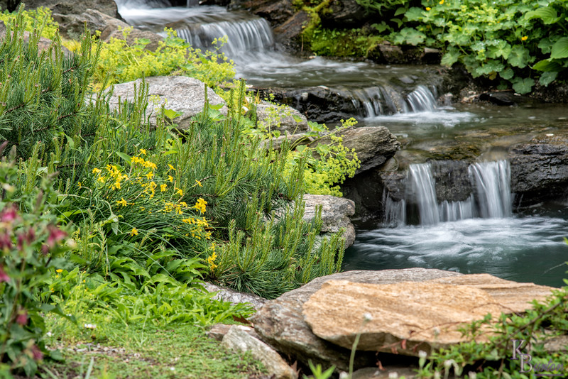 DSC_2707 rock garden waterfall
