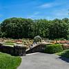DSC_5123  Rockerfeller rose garden pano