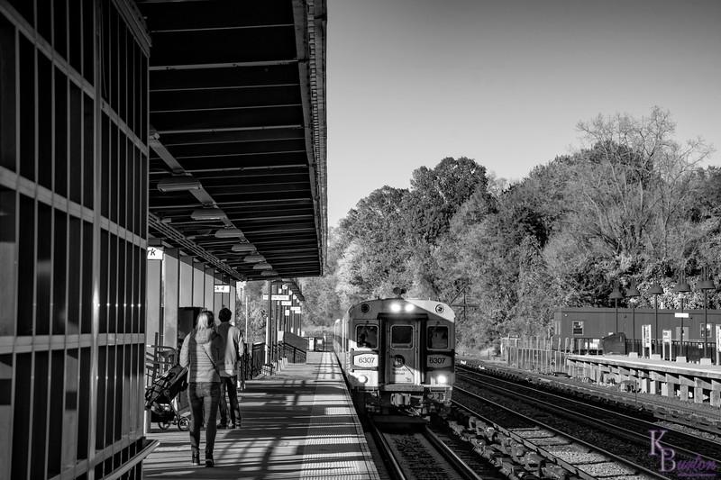DSC_4762 Riverdale train station in the fall