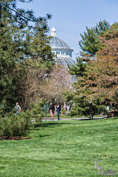 DSC_1778 springtime at the Botanical Gardens