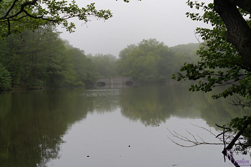 DSC_4292 foggy mornig at Clove Lakes