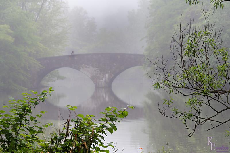 DSC_4202 foggy mornig at Clove Lakes