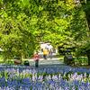 DSC_1768 spring scene at the botanical gardens