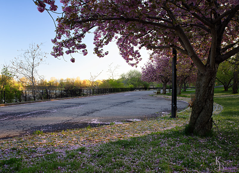 DSC_5645 daybreak at Silver Lakes_DxO