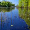 DSC_3264 wolfe's pond_DxO