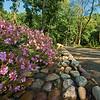 DSC_8370 healing gardens - snug harbor