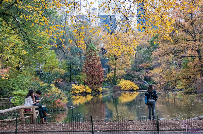 DSC_5557 Central Park , The Pond in the fall