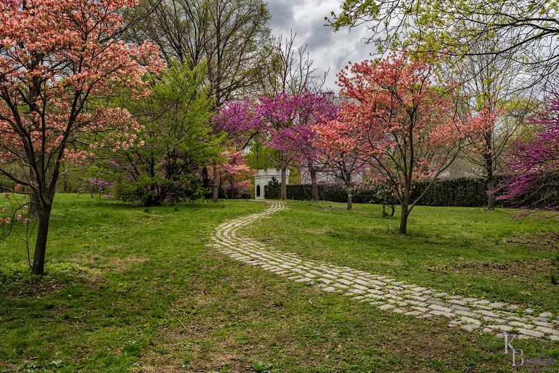 DSC_2407 pathway to the Secret gardens