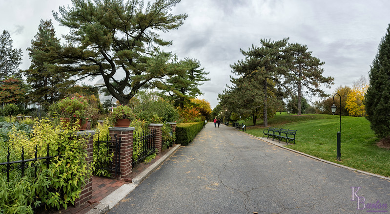 Fall scene at Perennial Garden way