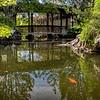 DSC_1248 Chinese gardens