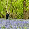DSC_1733 strolling through lavender fields