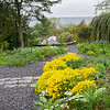 DSC_4002 Wild Gardens Wave Hill