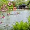 DSC_3060 Japanese Gardens in the spring