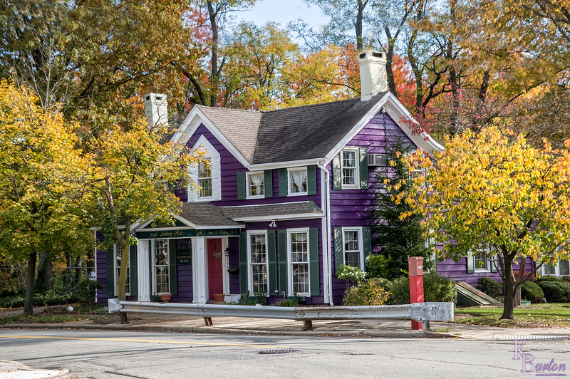 I loved this colorful home / business establishment, nestled so nicely inside of these lovely fall colors