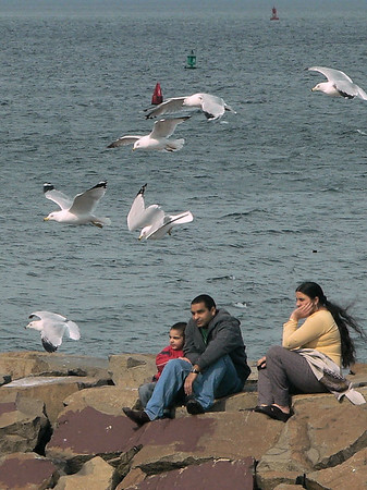 A family enjoys the Spring-like weather on the jetty after feeding the Gulls.
