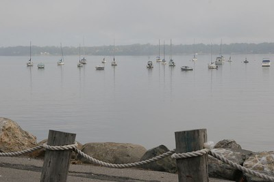 Misty morning at the Bayside Marina.