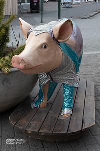 the sweet pig
