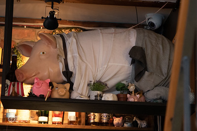 inside the sweet pig