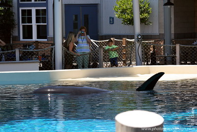 SeaWorld - San Diego, CA (Aug. 7, 2007)