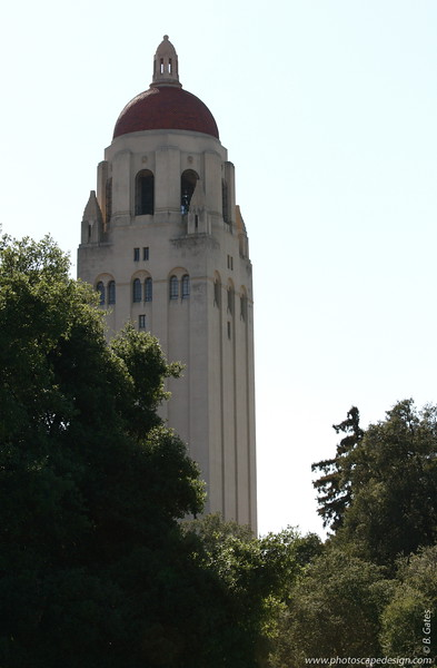 Stanford University - Palo Alto, CA