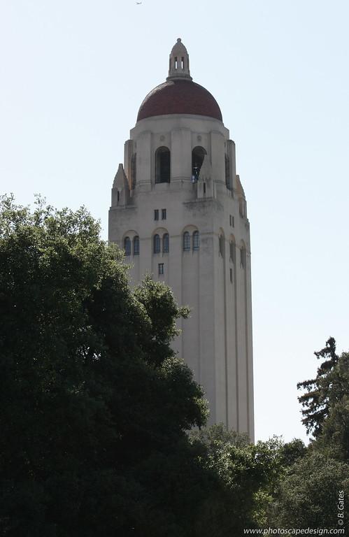 Stanford University - Palo Alto, CA