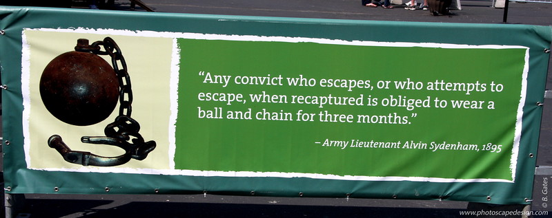 Alcatraz [D]