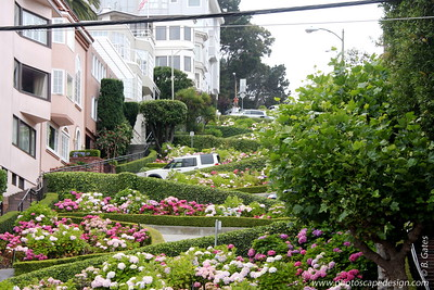 "Lombard Street  Lombard Street is not only ""The Crooked Street."" It continues in both directions, going all the way east, up Telegraph Hill to Coit Tower and continues west down through the Marina, where it becomes the major conduit to Golden Gate Bridge. A walk in either direction makes for a pleasant hike."