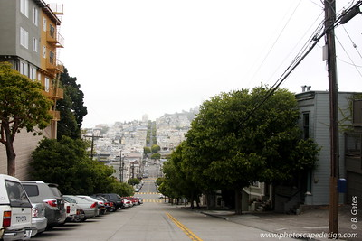 "The ""Hills"" of San Francisco"