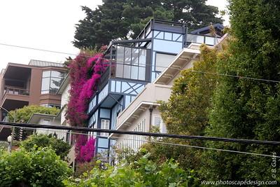 Lombard Street  [D]