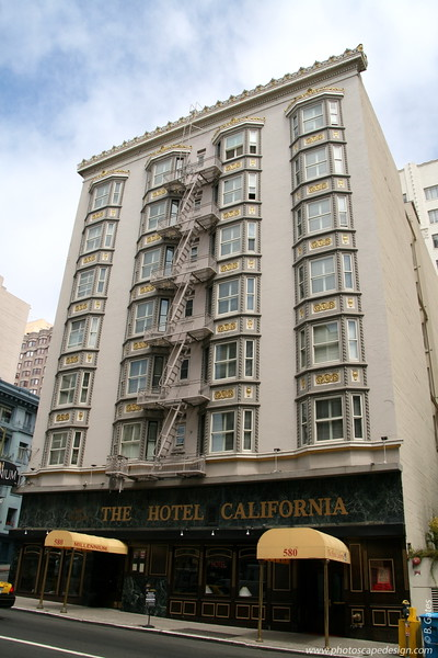 Hotel California [D]