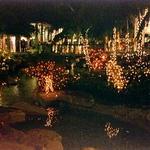 The Falls Mall - Miami, Florida (1999-2000)