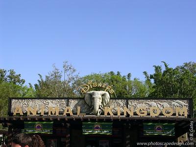 Disney World - Animal Kingdom (April 11, 2006)
