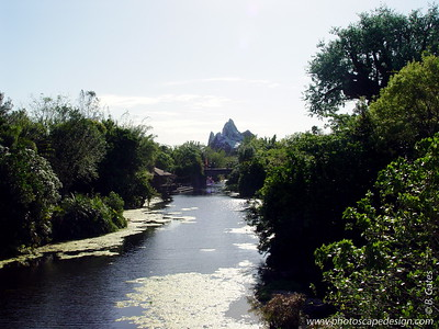 Disney World - Animal Kingdom - Mt. Everest (April 11, 2006)