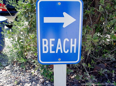 Any sign pointing to the beach is a good sign! Bowman's Beach - Sanibel Island (April 7, 2006)