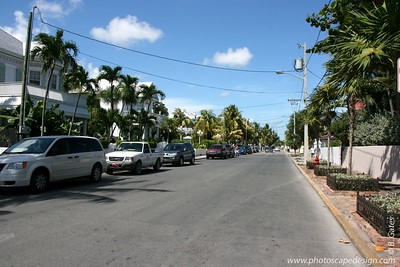 Key West (June 4, 2008)  Looking down South Street . . . behind us is the Southernmost Point.