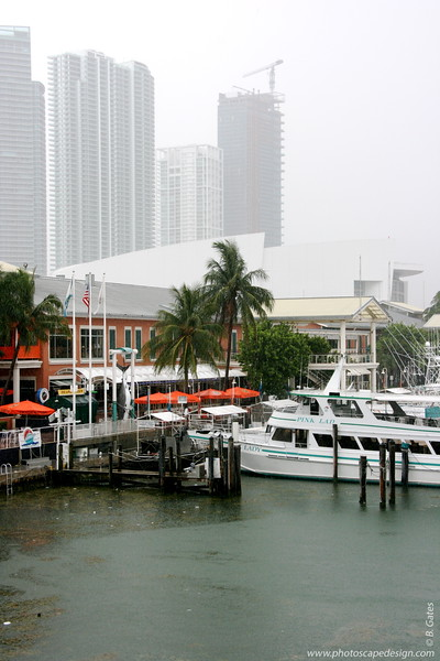Bayside Marketplace - Miami (May 30, 2008)