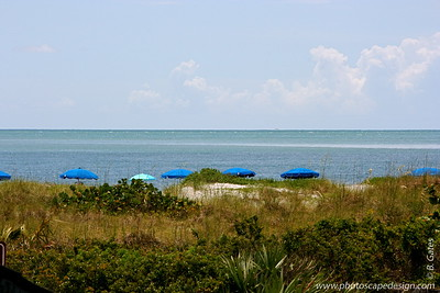 Bill Baggs Cape Florida State Park - Key Biscayne (June 2, 2008)