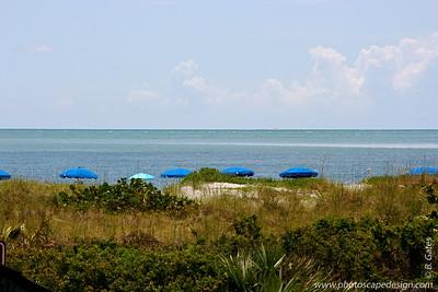 Bill Baggs Cape Florida State Park - Key Biscayne (June 2, 2008)