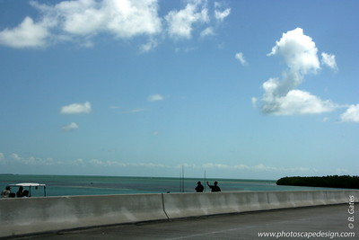 Along US 1 on the way back to Miami (June 7, 2008)