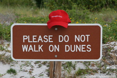 Smuggy taunting law enforcement by walking on the dunes in Key Biscayne.