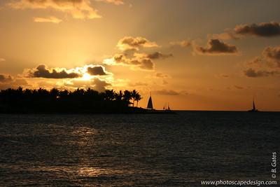 Sunset Celebration - Key West (June 4, 2008)