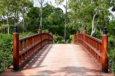 The Morikami Japanese Gardens - Delray Beach (May 31, 2008)  This bridge symbolizes the link between Japan and Florida provided by The Morikami.  Also, the Shinden Garden islands are reached by this stately arched bridge similar to those often painted vermillion in Japan after models originating in T'ang Dynasty China (618 – c. 907).