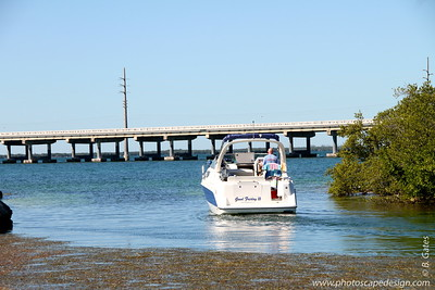 View of U.S. Overseas Highway 1