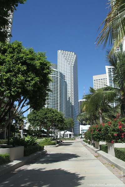 Downtown Miami - View from Brickell Key - Met 1 [left] and Wachovia Financial Center [center]