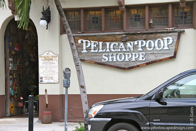 The Pelican Poop Shoppe, which was opened in 1988, is on the first floor of Casa Antigua.  It is Key West's premier Caribbean arts store which includes works from local artists as well as artists from Haiti, Guatemala, Mexico and South America.